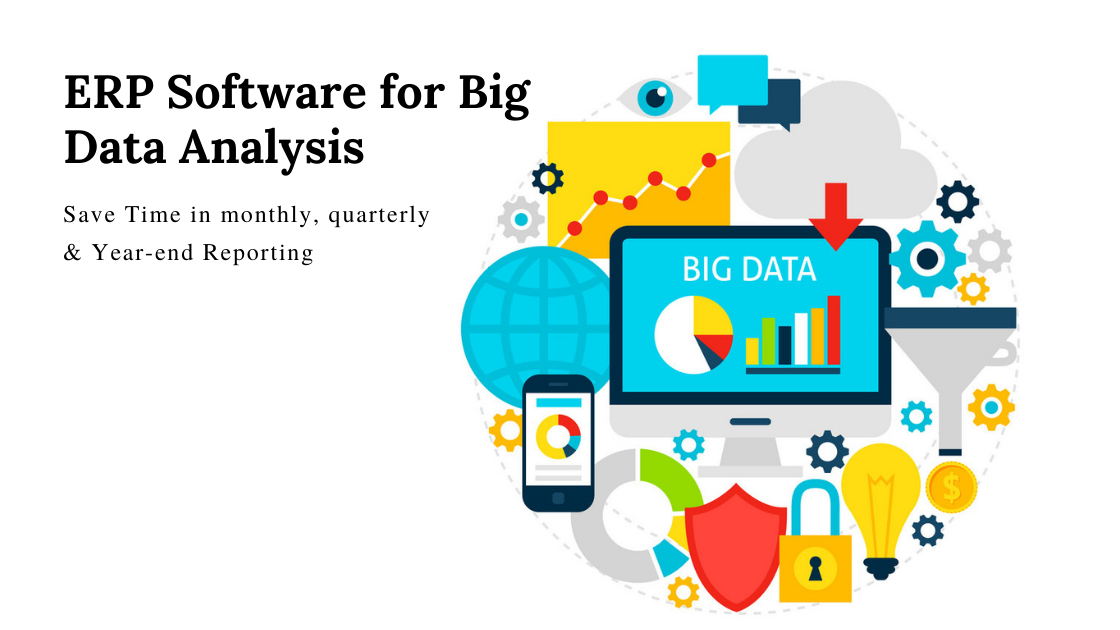 ERP Software for Big Data Analysis