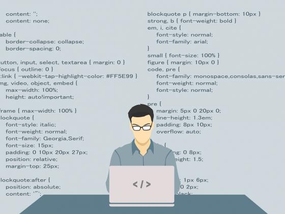Software Engineer   ERP Solution